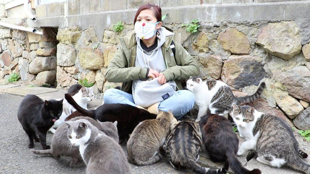 paraiso-dos-gatos-japao-17