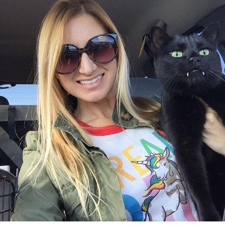 Gato Vampiro uma celebridade no instagram
